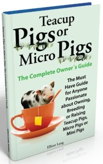micro pig ebook cover480x640